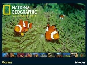 Oceans calendar 2011(Kalender)
