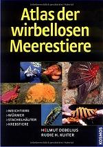 Atlas der wirbellosen Meerestiere: Weichtiere, Würmer, Stachelhäuter, Krebstiere