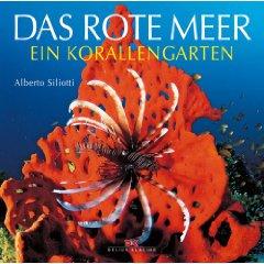 Das Rote Meer: Ein Korallengarten