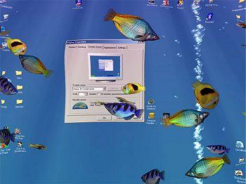bildschirmschoner screensaver aquarium unterwasser. Black Bedroom Furniture Sets. Home Design Ideas