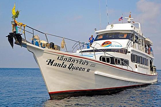 Manta Queen 6