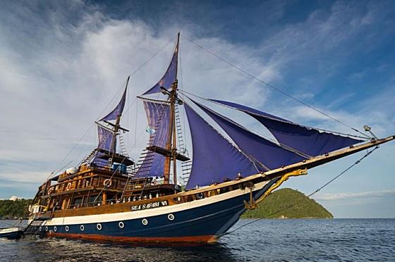 Sea Safari VI