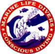 Marine Life Divers Negril Jamaica