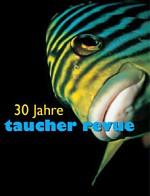 Taucher-Revue