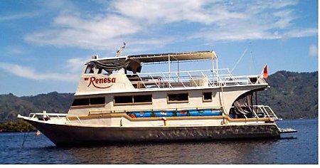 Renesa Diving Tours