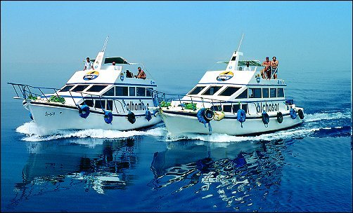 Subex Diving Centers - Hurghada