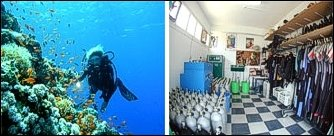 Nemo Dive Club