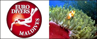 White Sands (ex. Ari Beach) - Euro Divers