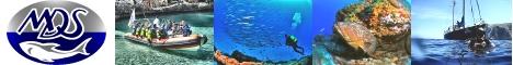 Michaels Diving School - Tauchen auf Mallorca und Cabrera