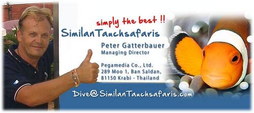 SimilanTauchsafaris simply the best!