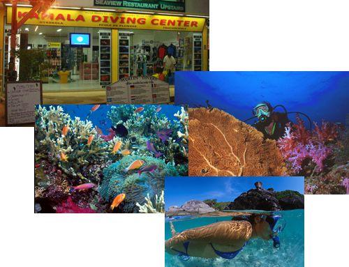 Phuket Tauchen - Merlin Divers - Kamala Tauchschule