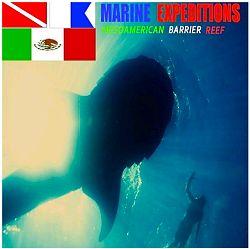 Marine-Expeditions