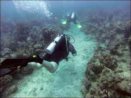 Ultra Marine Divers