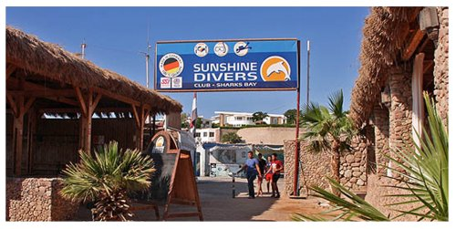 Sunshine Divers Club