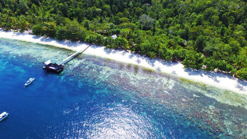 Raja Ampat Biodiversity Nature Resort