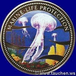 meerjungfrau    quot medusa quot  qualle mermaid   jellyfish