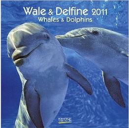 Wale & Delfine 2011