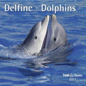 Delfine 2011