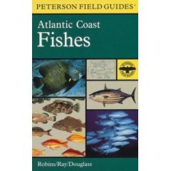 Buch: A Field Guide to Atlantic Coast Fishes: North America