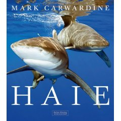 Buch: Haie