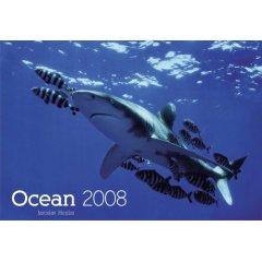 Kalender: Ocean 2008