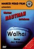 Walhai - Reise des Riesen