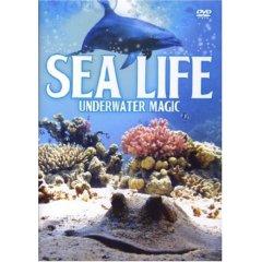 DVD: Ocean Life